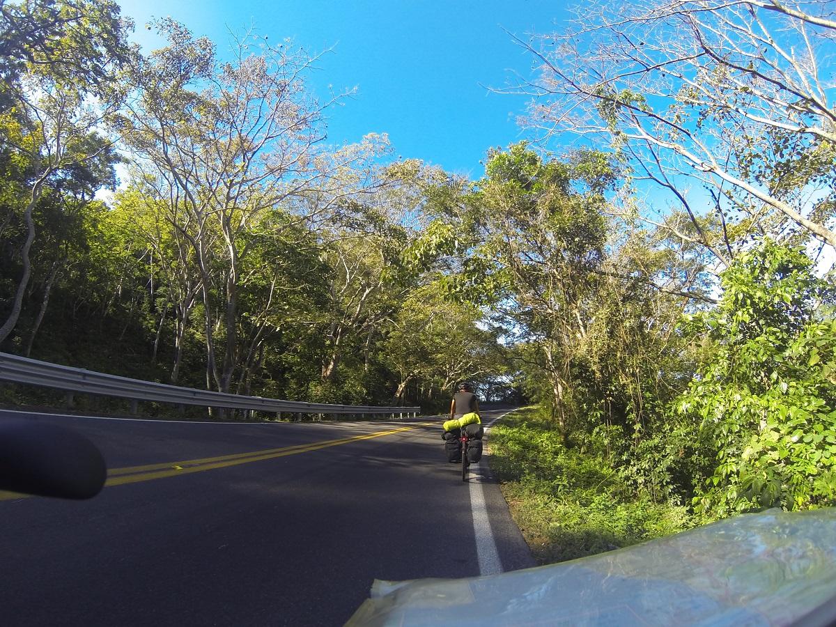 Durch den Jungle