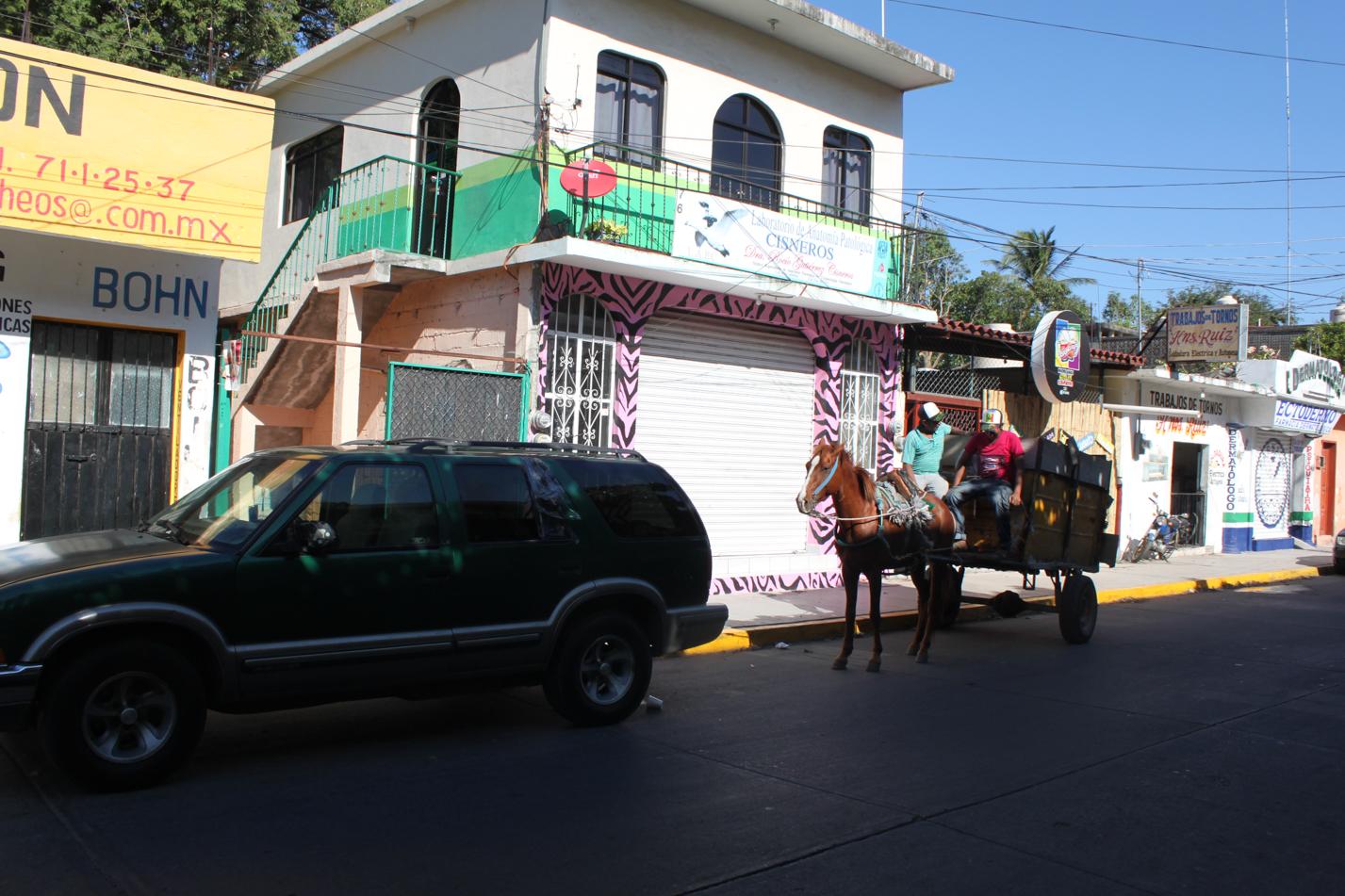 Im Stadtbild von Juchitán de Zaragoza sind neben übertrieben vielen Tuk - Tuks auch Pferdekarren im Stadtbild fest verankert