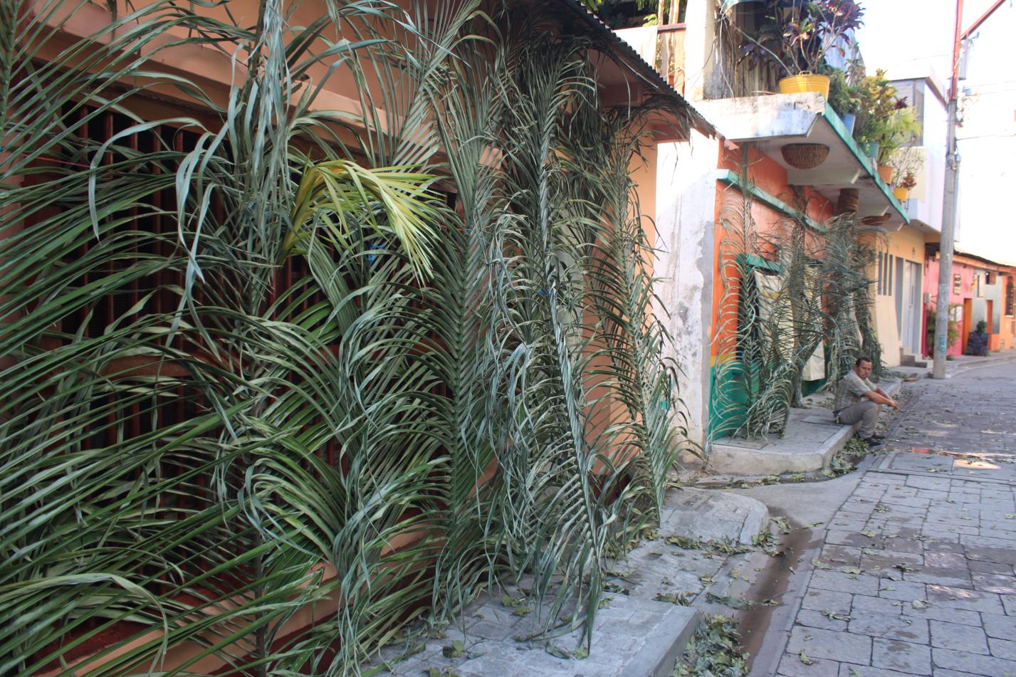 Am Palmensonntag waren die Straßen von Flores gesäumt mit Palmenblättern.