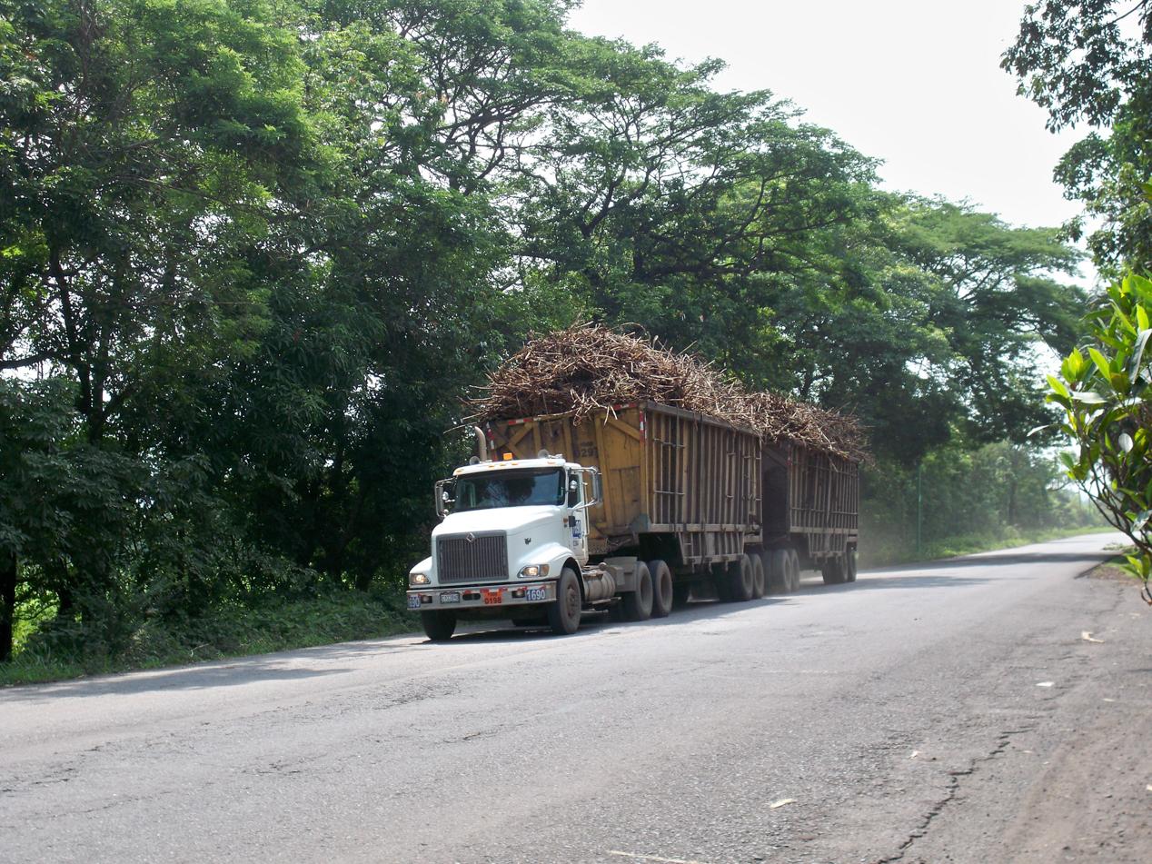 Zuckerrohrtransporter