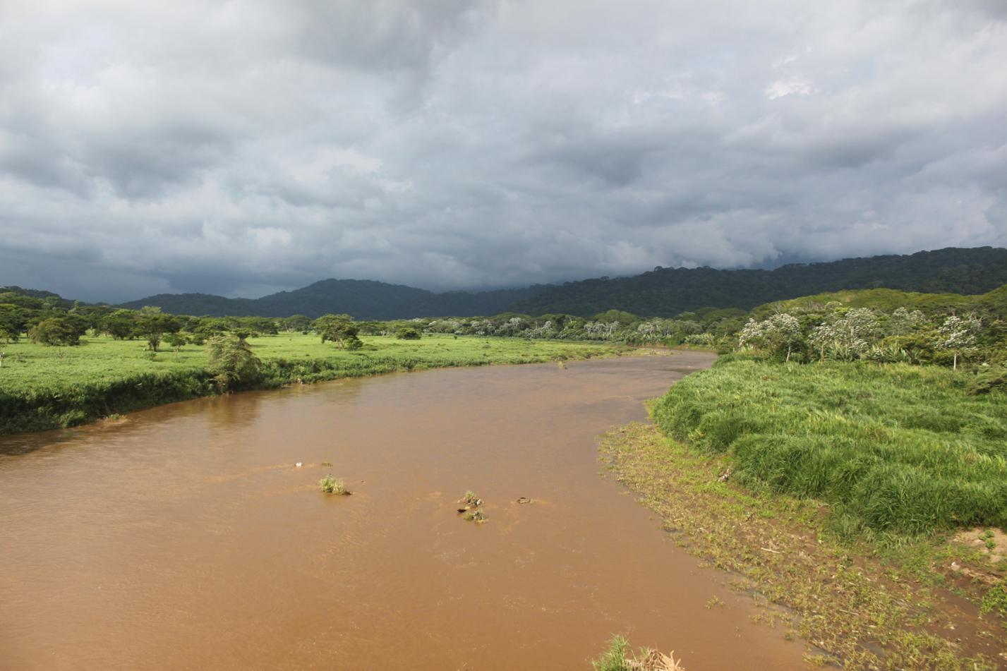 Dieser Fluss ist voll von Krokodilen.