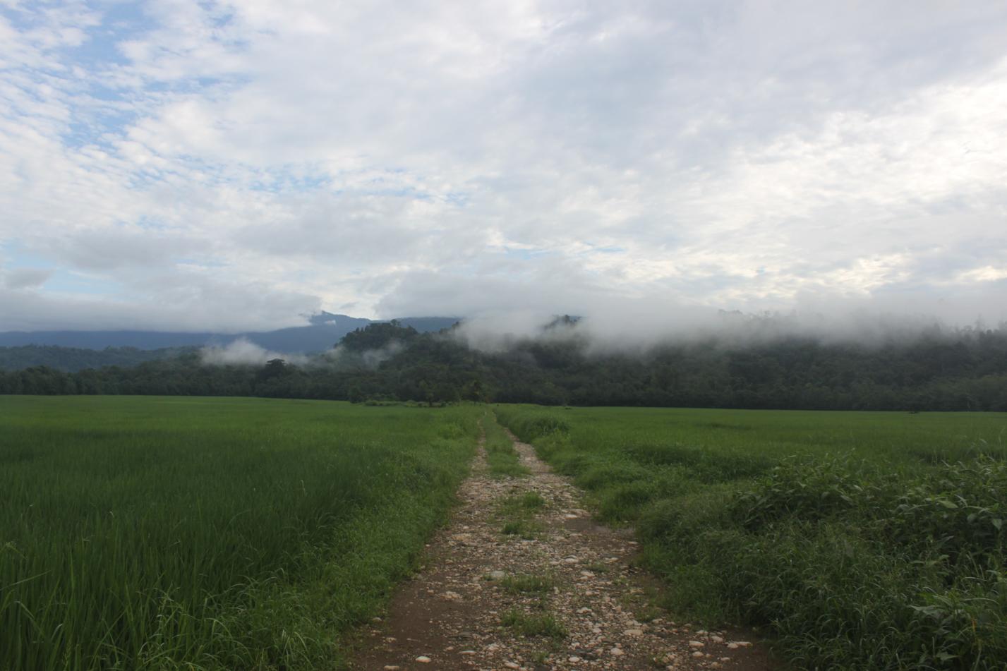 Mystisches Morgenpanorama an unserem letzten Tag in Costa Rica.