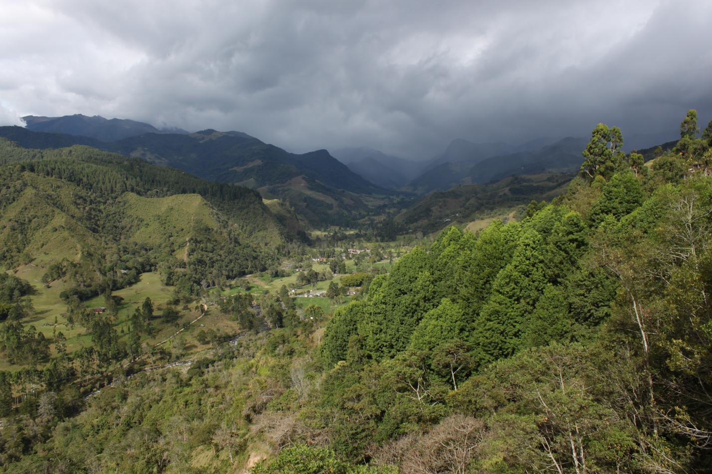 Blick vom Aussichtspunkt ins Valle de Cocora. Dort soll es den nächsten Tag unser Ausflug hinführen.