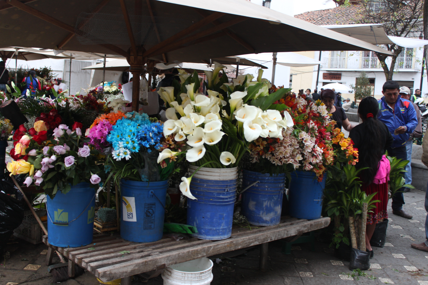 Blumenmarkt im Zentrum von Cuenca.