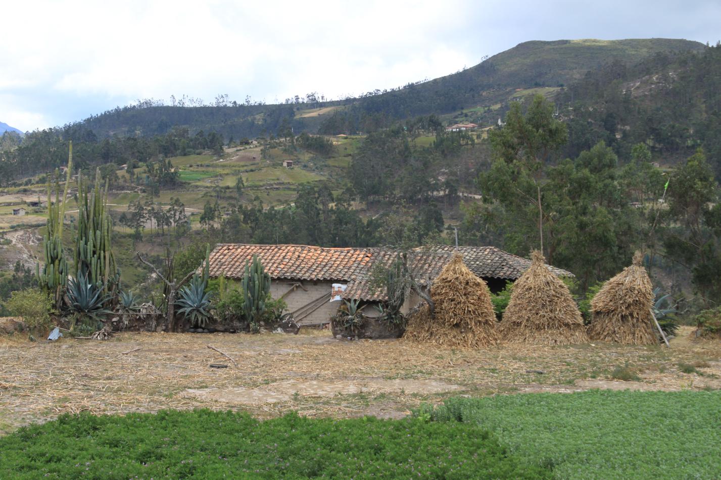 Blick auf eines der vielen Anwesen. Wohnhaus und ein kleines Feld gab es immer davor. Kartoffeln, Möhren und Mais wurden angepflanzt.