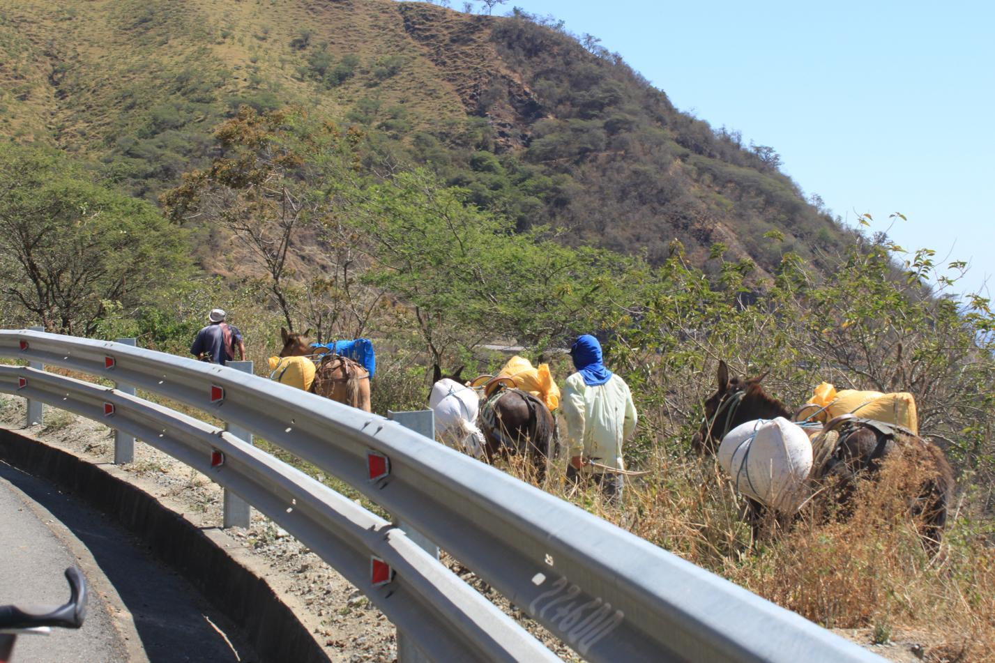 Hier werden gerade Anbauprodukte aus dem Tal zur Straße gebracht.