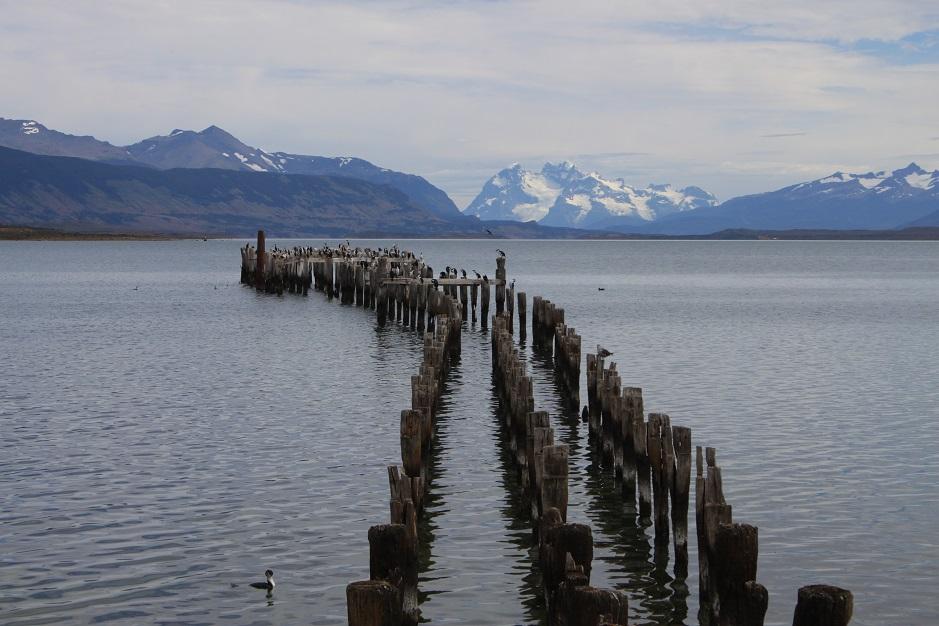 Nach unserem 5 - tägigem Ritt durch die Pampa, sind wir in Puerto Natales eingerollt. Der Wind war unser größter Feind und kam immer aus der Richtung wo wir ihn nicht brauchten.