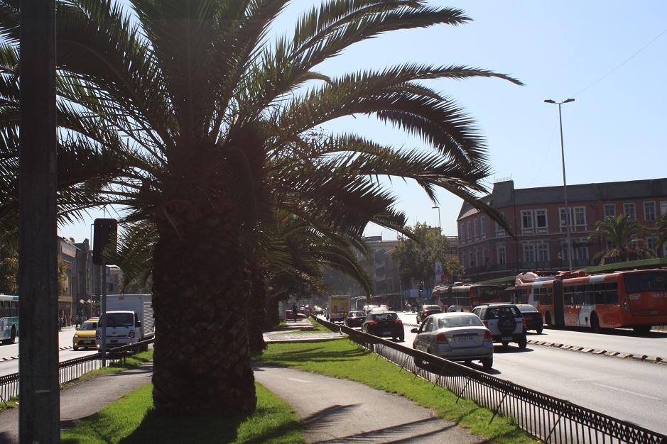 Nach knapp zwei Tagen im Bus, wurden wir in Santiago mit sommerlichen Temperaturen empfangen.