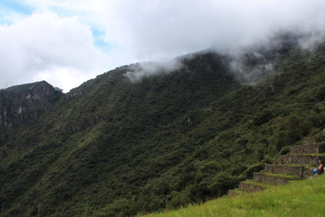 Da hinten schlängelt sich der Inka - Trail in die Stätte hinab.l